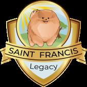 Spitz alem�o (lulu da pomer�nia) - Canil Saint Francis Legacy
